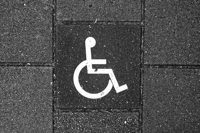 DS discapacitat discapacitado 2019